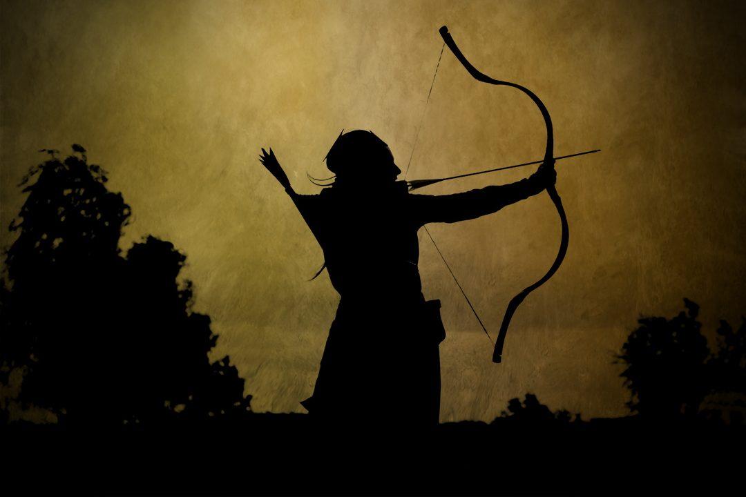 taylor archery bows